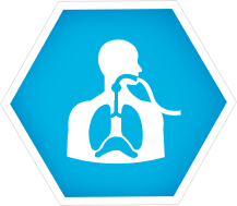 Ventilated Patient Care